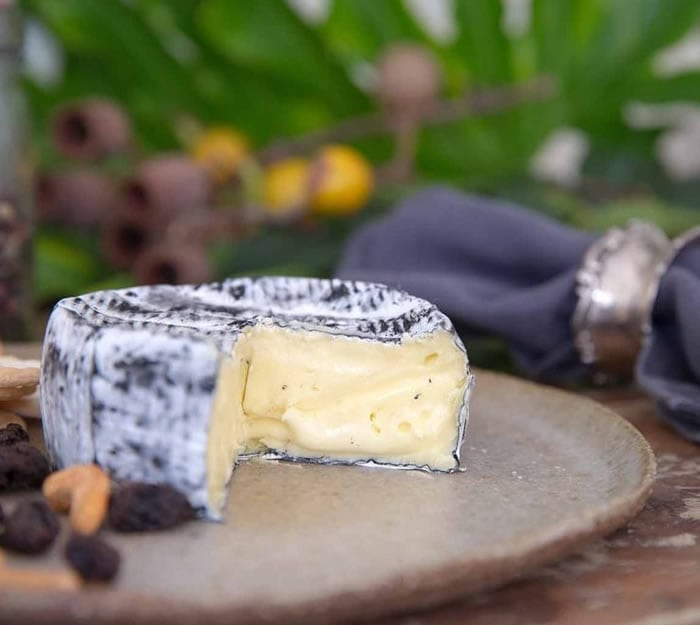 Blog Introducing Our New Woombye Ash Brie