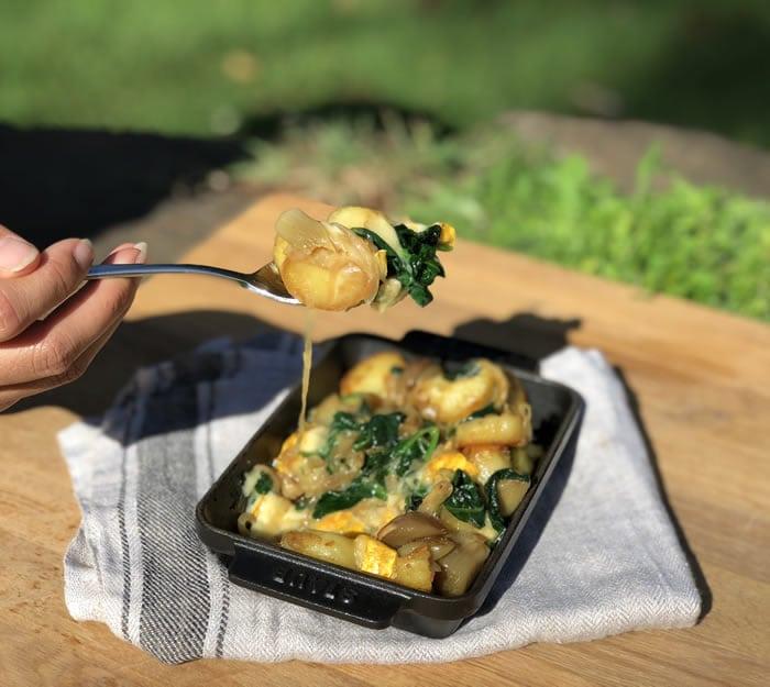 Blog Gratin Of Woombye Cheese Blackall Gold03