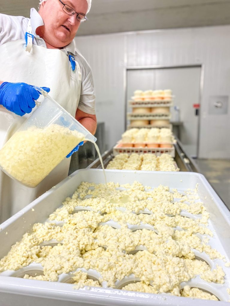 Blog A Day In The Life Of A Cheese Maker01