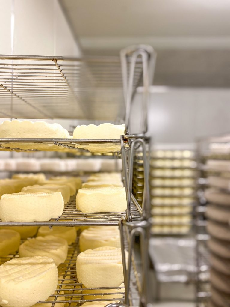 Blog A Day In The Life Of A Cheese Maker05